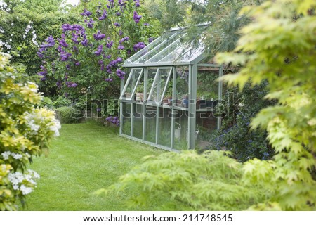 Greenhouse in back garden with open windows for ventilation Stock photo ©