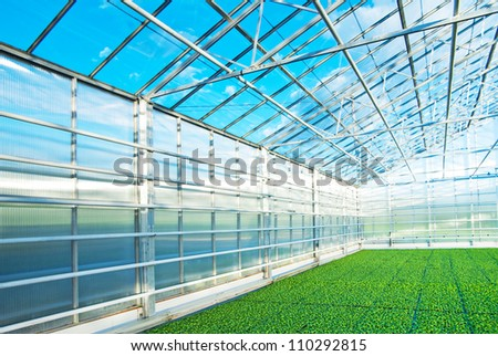 Greenhouse in Norway