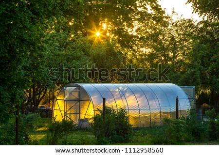 Greenhouse on the precinct. Private garden. Sunset light. Stock photo ©