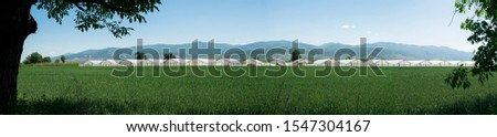 Greenhouse plantation and cultivated land. Panoramic image