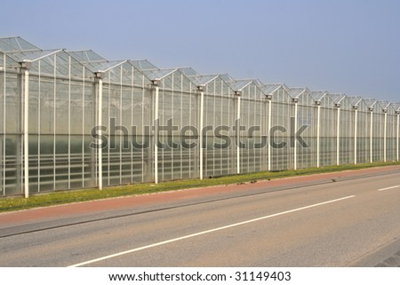 stock photo : Greenhouses in Holland