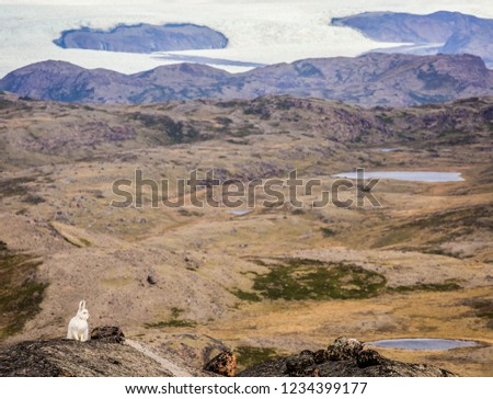 Greenland Hiking Adventure Travel #1234399177