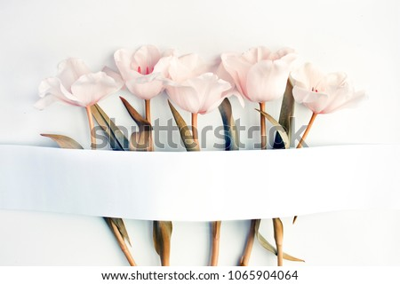 greeting card concept with tulip flowers  #1065904064