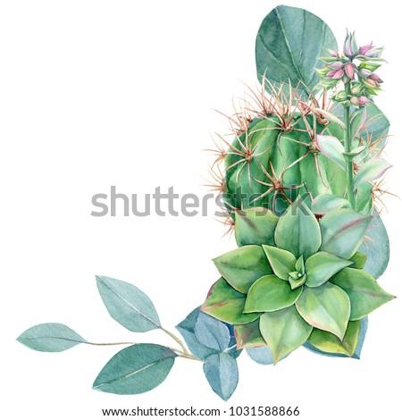 greeting card, eucalyptus leaves, succulent echeveria, cactus, watercolor, hand drawing