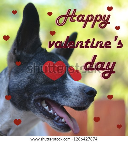 """Greeting card for Valentine's day, with a cute pug. Cartoon dog with crown and glasses and heart. illustration for a postcard or a poster. Text """"Happy Valentine's Day. #1286427874"""