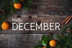 greeting card with fir branches and tangerines and the text Hello December