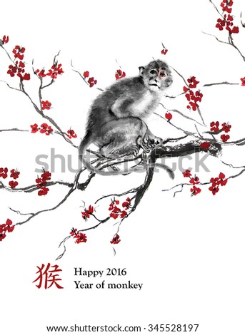 Greeting card  year of monkey. A monkey sitting on a branch of cherry blossom, oriental ink painting. With Chinese hieroglyph
