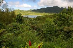 Grenada island - Grand Etang National Park - Grand Etang Lake