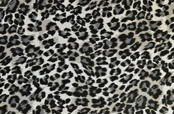 Grey and black leopard pattern. Animal print as background.