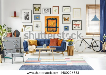 Grey armchair and blue sofa in spacious living room interior with posters and bicycle. Real photo #1480226333