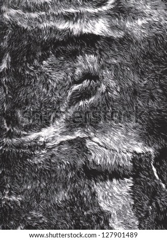 Grey / black / white fur texture background