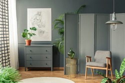 Grey chair with a decorative screen standing next to a cupboard surrounded by plants in a grey, botanic room interior