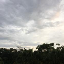 Grey Cloudy Skies