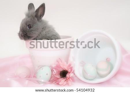 grey easter bunny