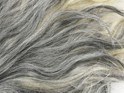 Grey  Hair Texture For Background