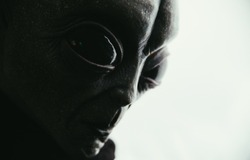 Grey humanoid alien . portraits set