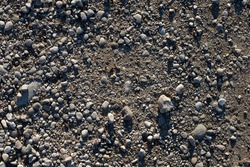 Grey pebbles and soil texture. Small river pebbles background