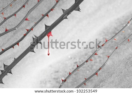 Grey scale rose lines with red thorns over a marble background. The color of one rose stem has faded, and shows a last, acrylic colored thorn, with a falling drop.