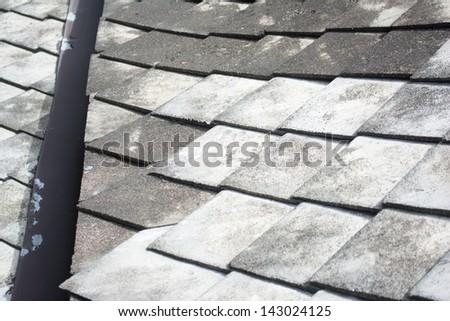 Grey slate roof.  #143024125