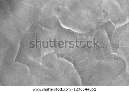 Grey texture decorative Venetian stucco for backgrounds #1236544852