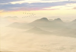 Greylag goose (Anser anser), wild geese in flight, with cloud-covered mountain landscape at sunset