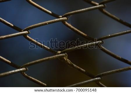 Grid #700095148