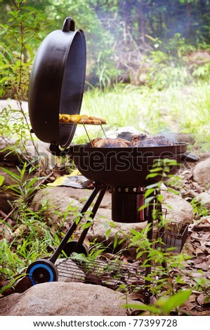 grill chicken on barbe que isolated green forest