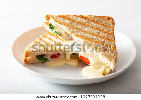 grilled cheese and tomato sandwich on white background