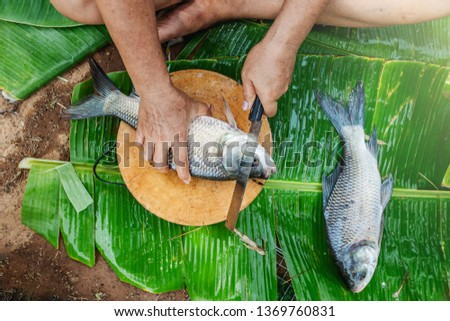Grilled Fish,Burnt fish menu #1369760831