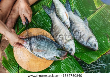 Grilled Fish,Burnt fish menu #1369760840