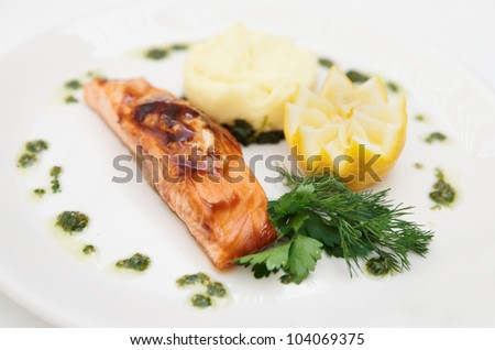 Grilled salmon on plate close-up
