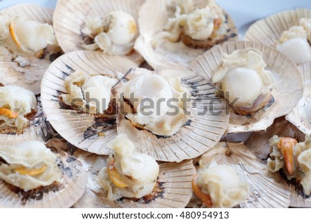 Shutterstock Grilled scallop, Thailand. Scallop is a common name that is primarily applied to any one of numerous species of saltwater clams or marine bivalve mollusks in the taxonomic family Pectinidae.
