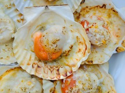 Grilled scallops shell with butter and cheese. Thai seafood grilled scallops on white plate.