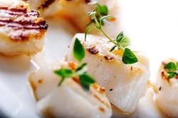 Grilled scallops with thyme leafs on white plate, close up