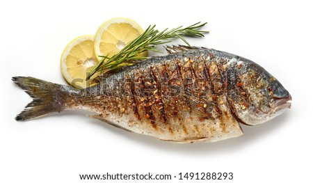 grilled spicy fish isolated on white background, top view