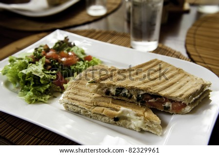 Grilled Vegetable Panini with Salad on a White Plate