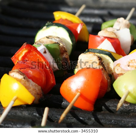 Grilling shishkabobs during a summer picnic at the park