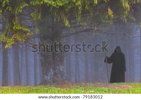 Grim Reaper in the foggy wood - stock photo