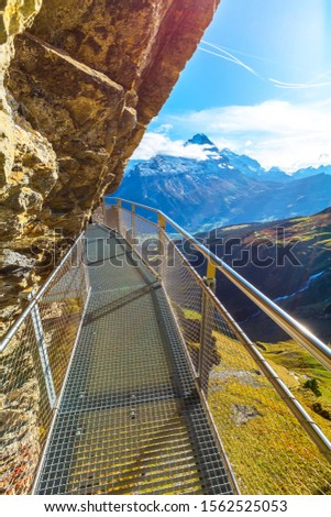 Grindelwald, Switzerland landmark sky cliff walk metal bridge at First peak of Swiss Alps mountain, snow peaks panorama, Bernese Oberland, Europe