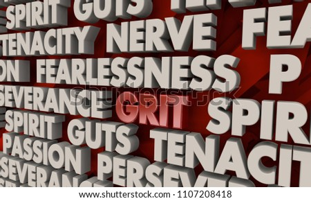 Grit Passion Persistence Spirit Guts Tenacity Words 3d Render Illustration