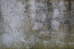 Gritty Grunge Wall Texture
