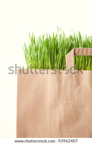 Grocery paper bag full of green grass, isolated over white