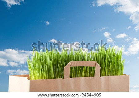 Grocery paper bag with green grass over blue sky
