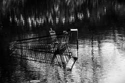 Grocery store shopping cart in water, gray