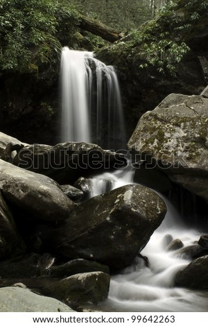 Grotto Falls - Great Smoky Mountains National Park