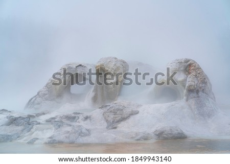 Photo of  Grotto geyser in Upper Geyser Basin of Yellowstone National Park in Wyoming state of the US in America, Unesco World Heritage Site