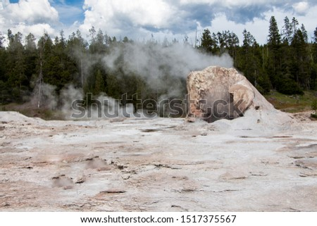 Grotto Geyser, Old Faithful basin in Yellowstone National Park #1517375567