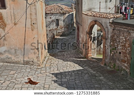 Grottole, Matera, Basilicata, Italy: ancient alley on a sunny day in the old town of one of the oldest villages in the region