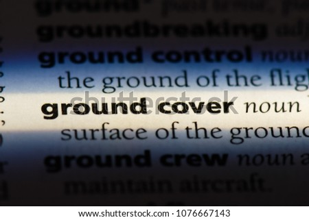 ground cover ground cover concept. #1076667143