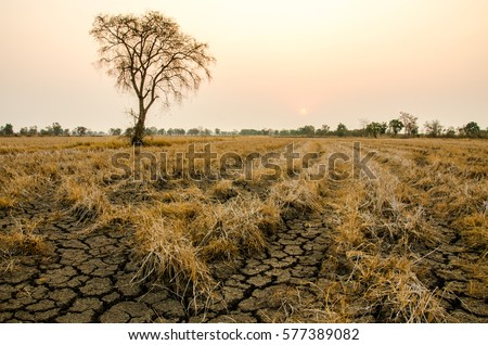 ground drought